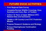 future dvcic activities