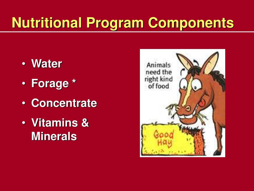 Nutritional Program Components