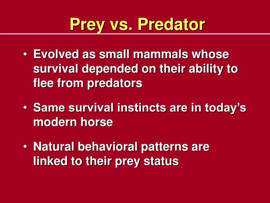 Prey vs. Predator