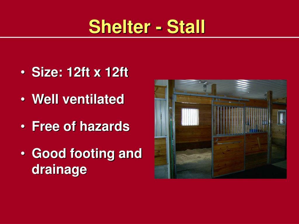 Shelter - Stall