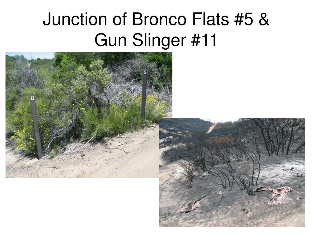 Junction of Bronco Flats #5 &
