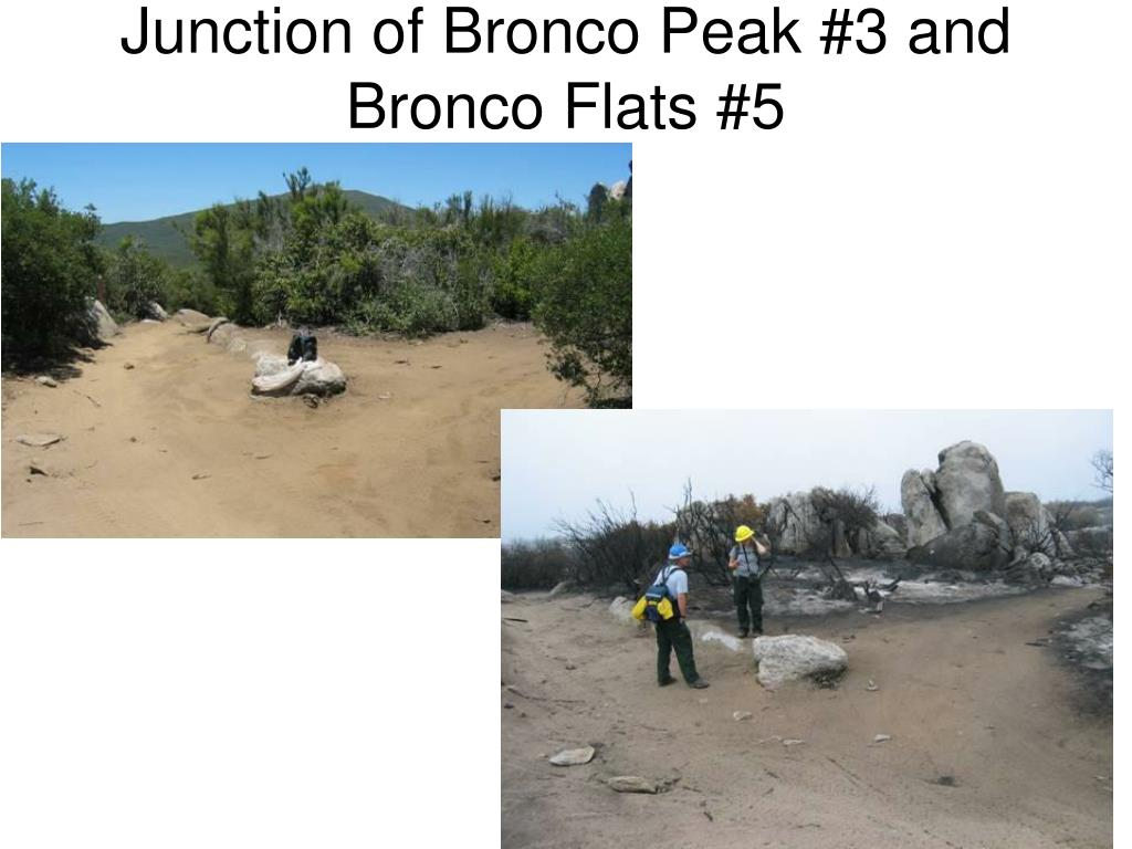Junction of Bronco Peak #3 and Bronco Flats #5