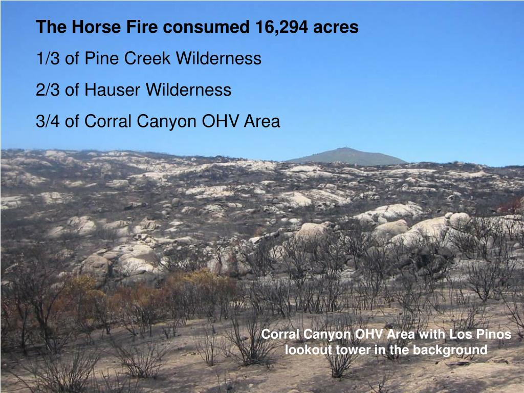 The Horse Fire consumed 16,294 acres