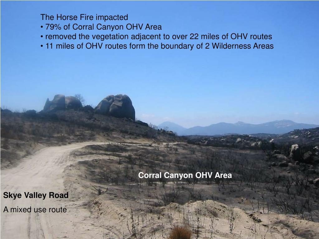 The Horse Fire impacted