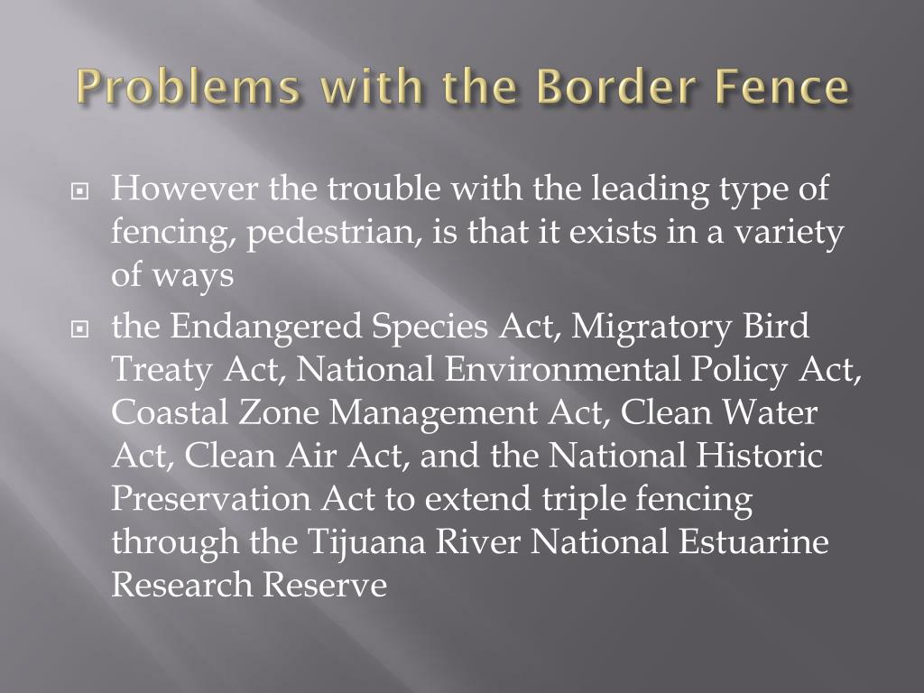 Problems with the Border Fence