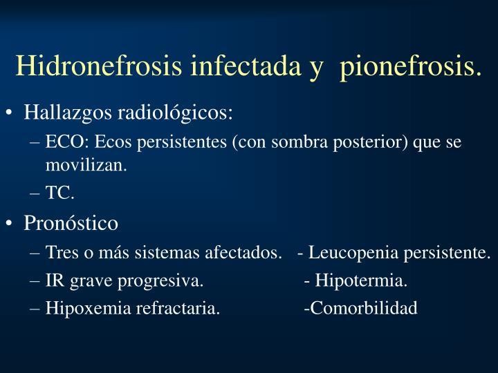 Hidronefrosis infectada y  pionefrosis.