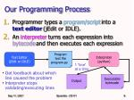 our programming process