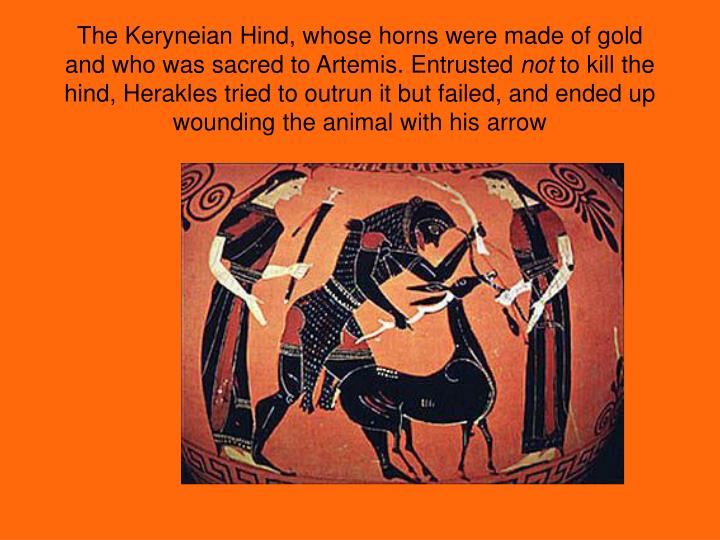 The Keryneian Hind, whose horns were made of gold and who was sacred to Artemis. Entrusted