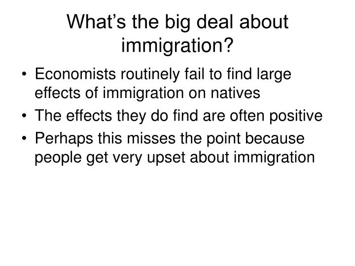 What's the big deal about immigration?