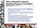 why a nonprofit capacity building program in the saa