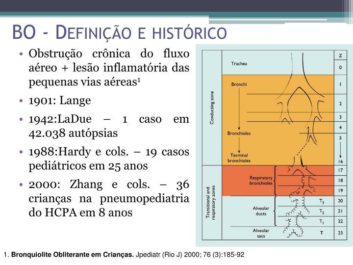 BO - Definição e histórico