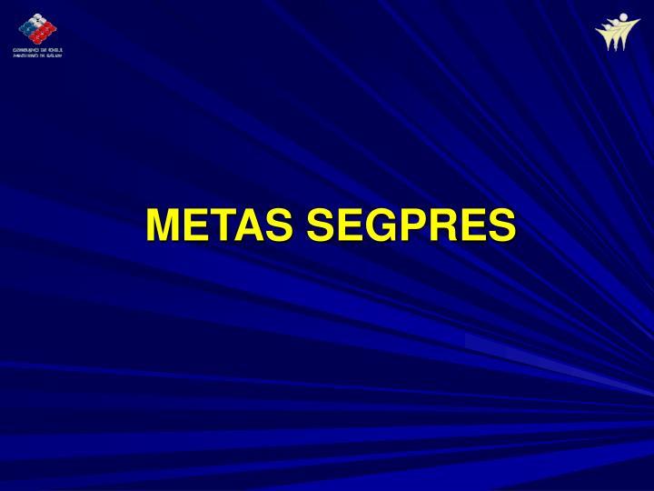 METAS SEGPRES