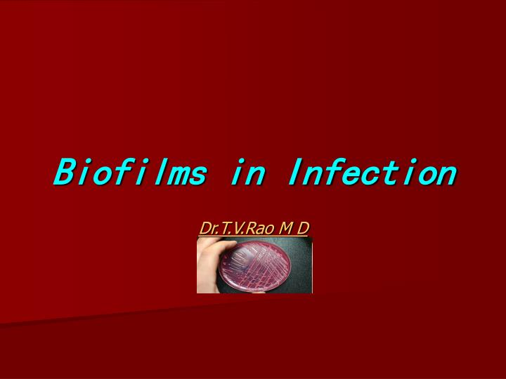 biofilms in infection n.
