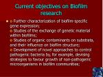 current objectives on biofilm research1