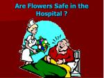 are flowers safe in the hospital