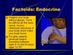 factoids endocrine
