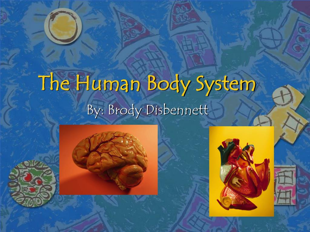 the human body system l.