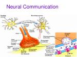 neural communication12