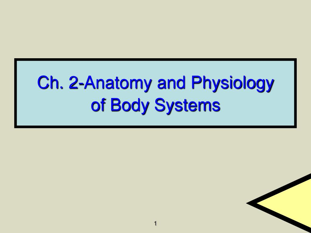 ch 2 anatomy and physiology of body systems l.