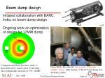 beam dump design