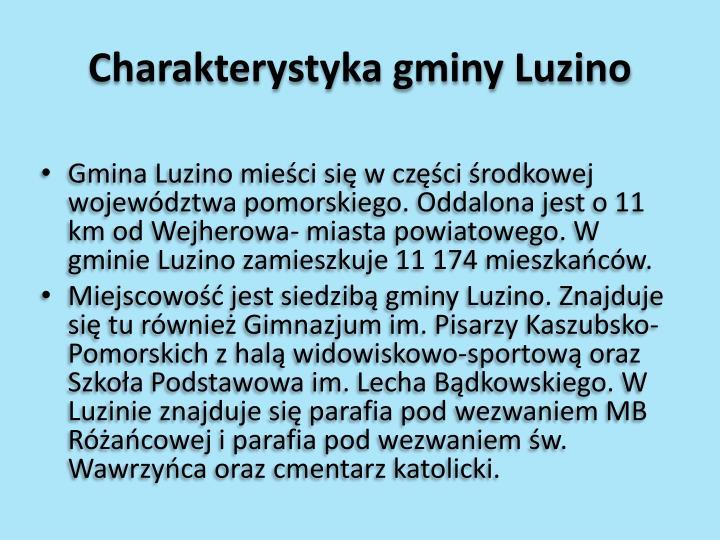 Charakterystyka gminy luzino