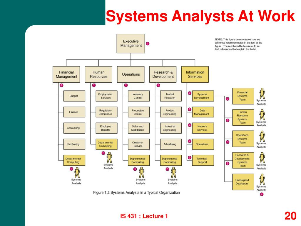 Systems Analysts At Work
