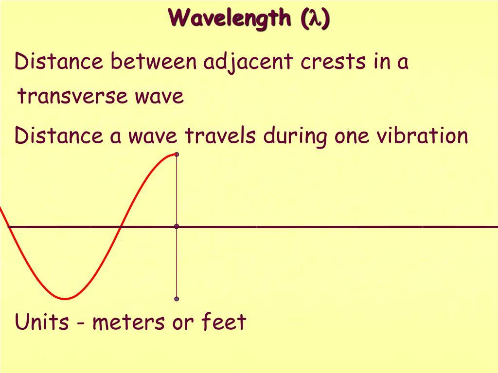 Distance between adjacent crests in a transverse wave