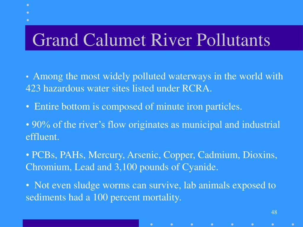 Grand Calumet River Pollutants