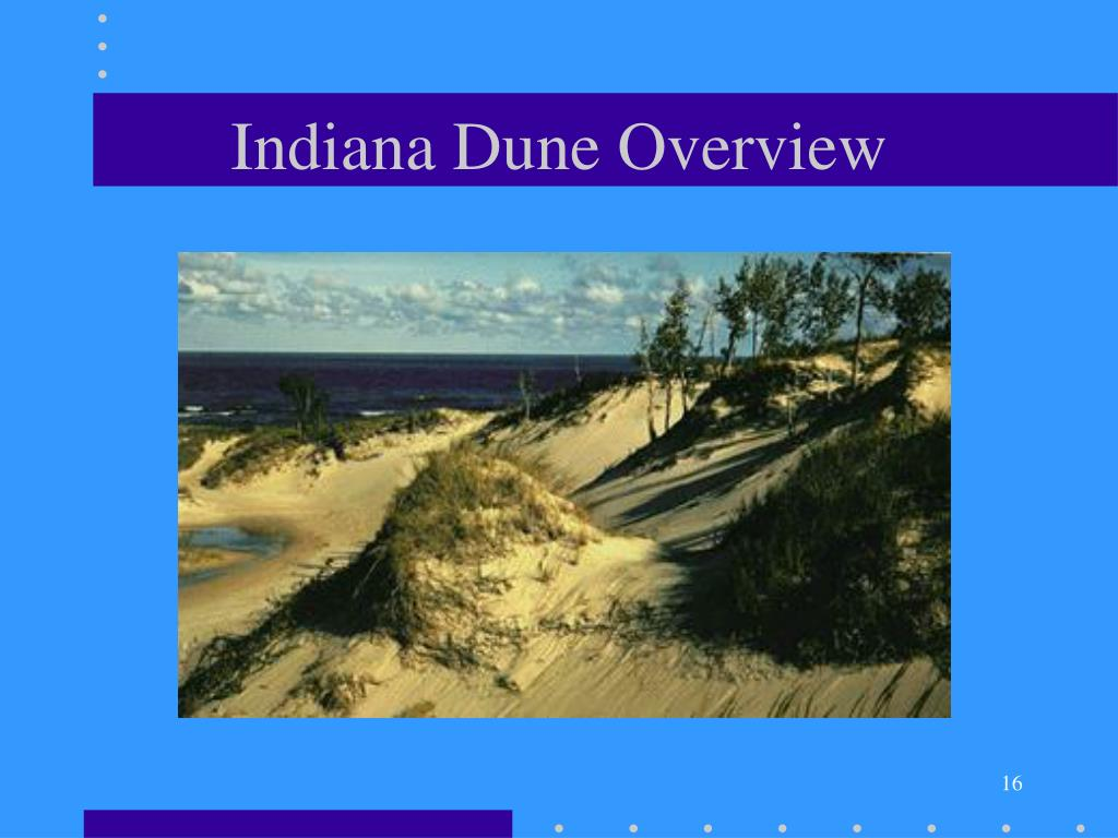 Indiana Dune Overview