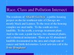 race class and pollution intersect