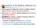 semantics of the relation attributes 1