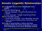 genetic linguistic relationships