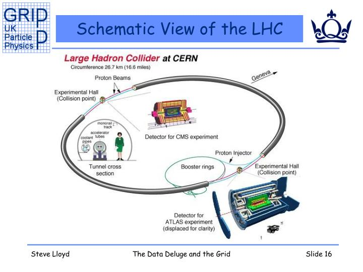 Schematic View of the LHC
