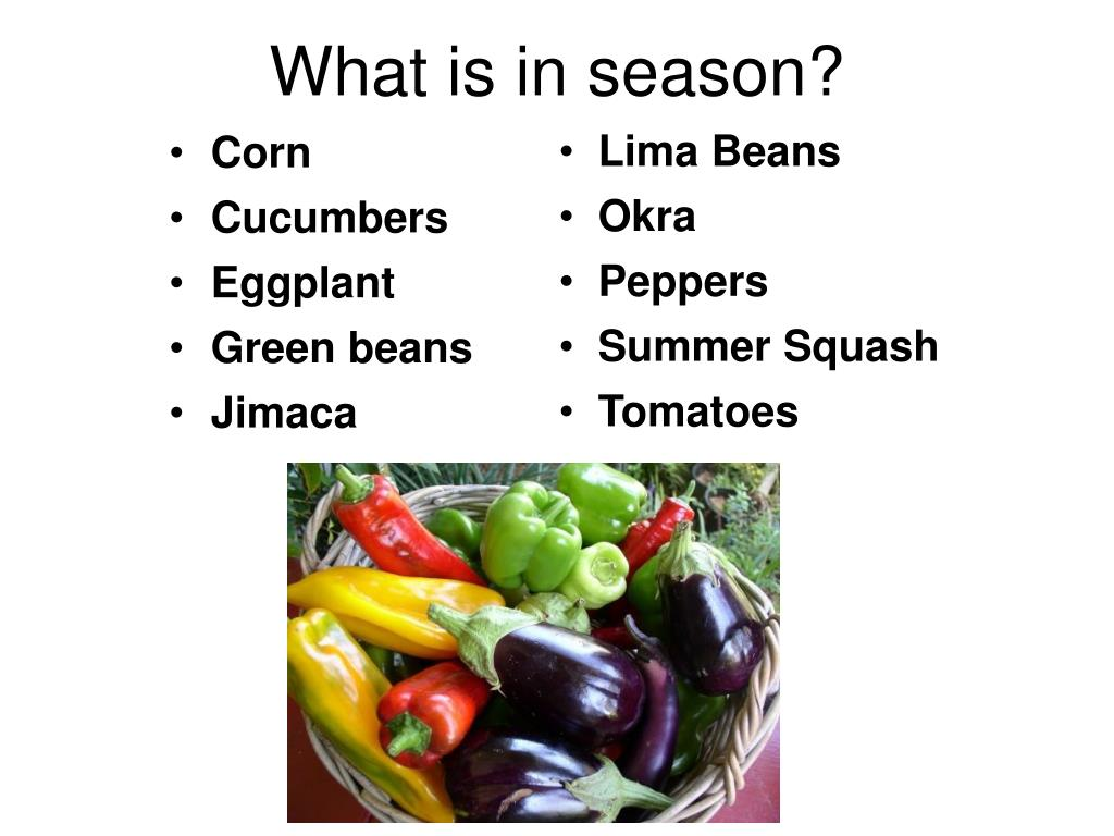 What is in season?