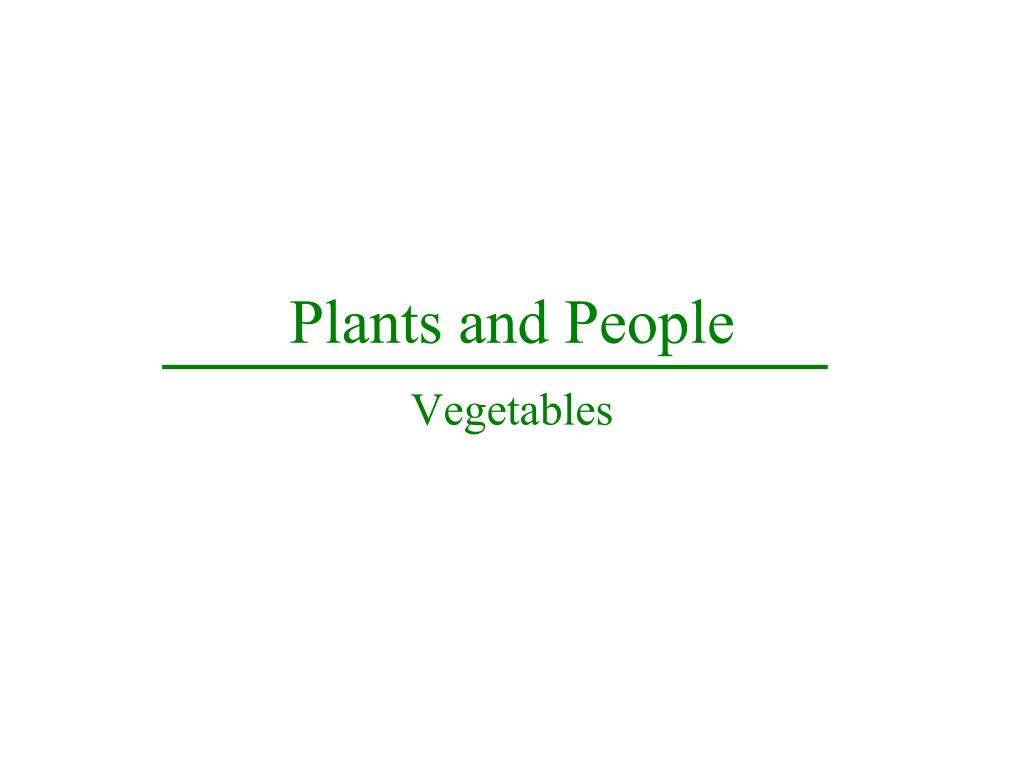 plants and people l.