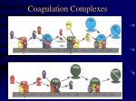 coagulation complexes