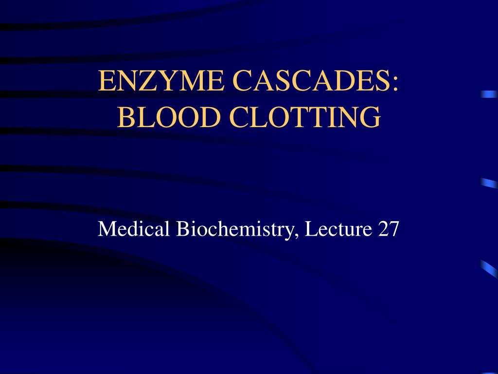 enzyme cascades blood clotting l.