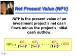 net present value npv