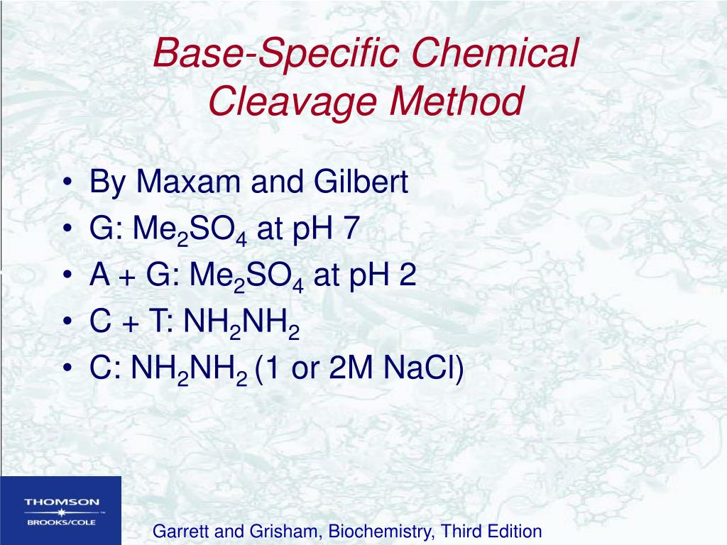 Base-Specific Chemical Cleavage Method