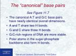 the canonical base pairs