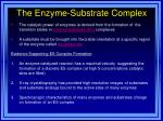 the enzyme substrate complex