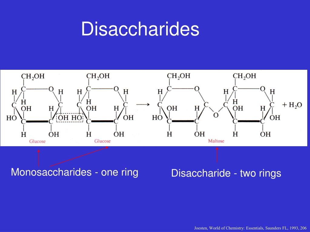 Monosaccharides - one ring