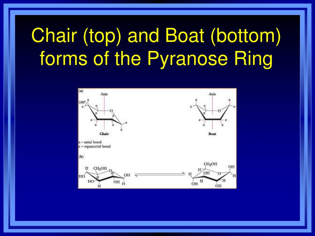 Chair (top) and Boat (bottom) forms of the Pyranose Ring