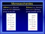 monosaccharides8