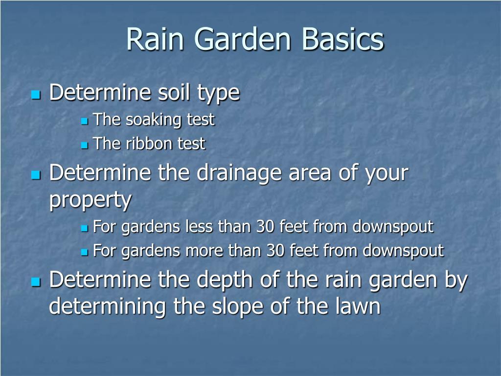 Rain Garden Basics