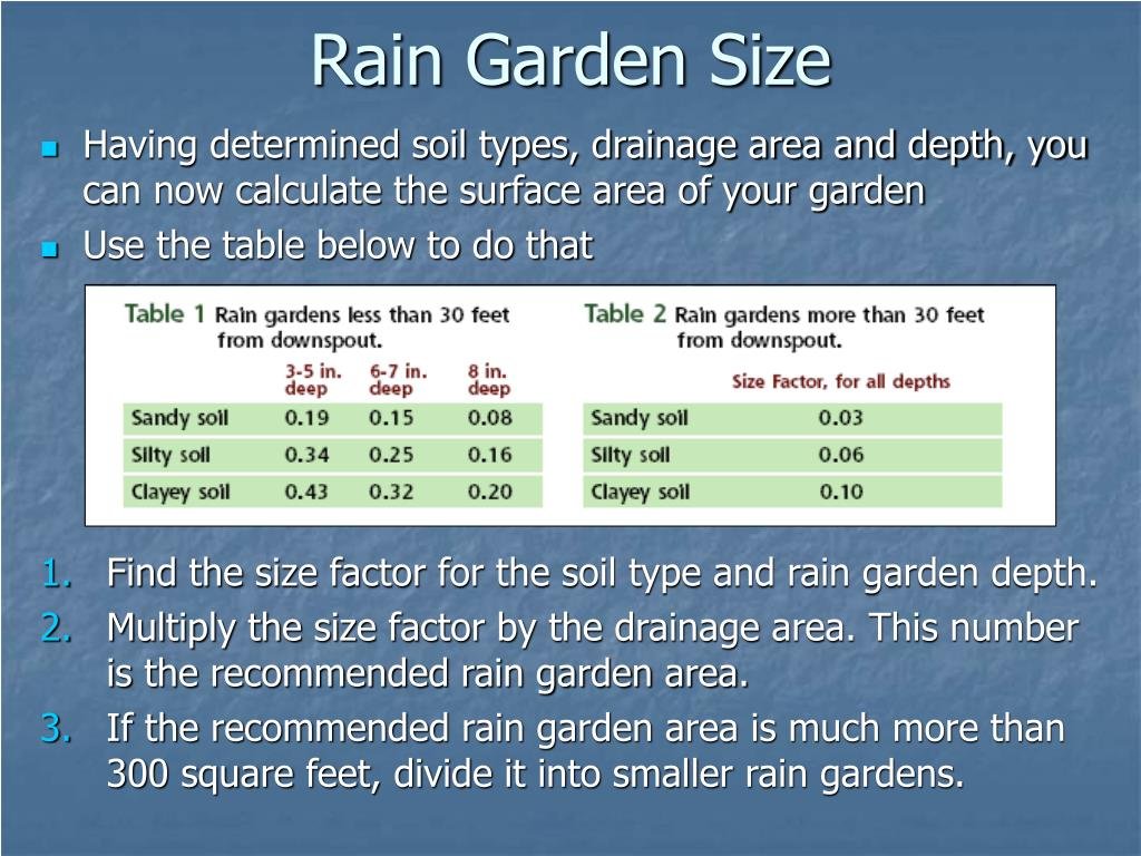 Rain Garden Size