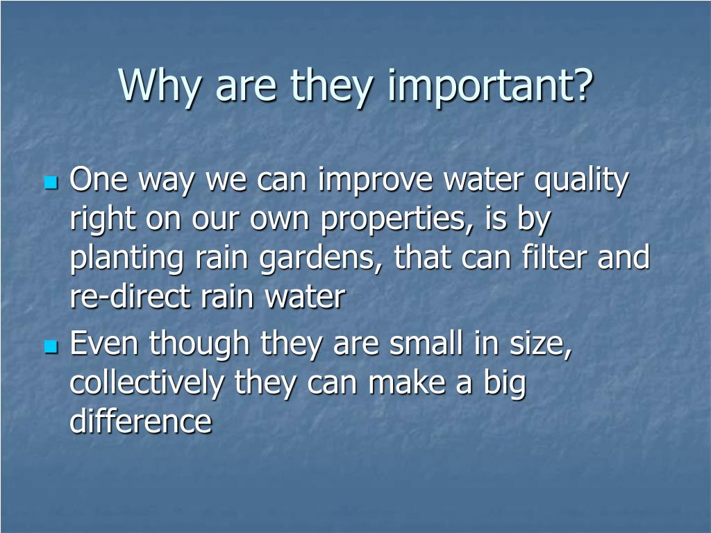 Why are they important?