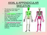 axial appendicular skeleton