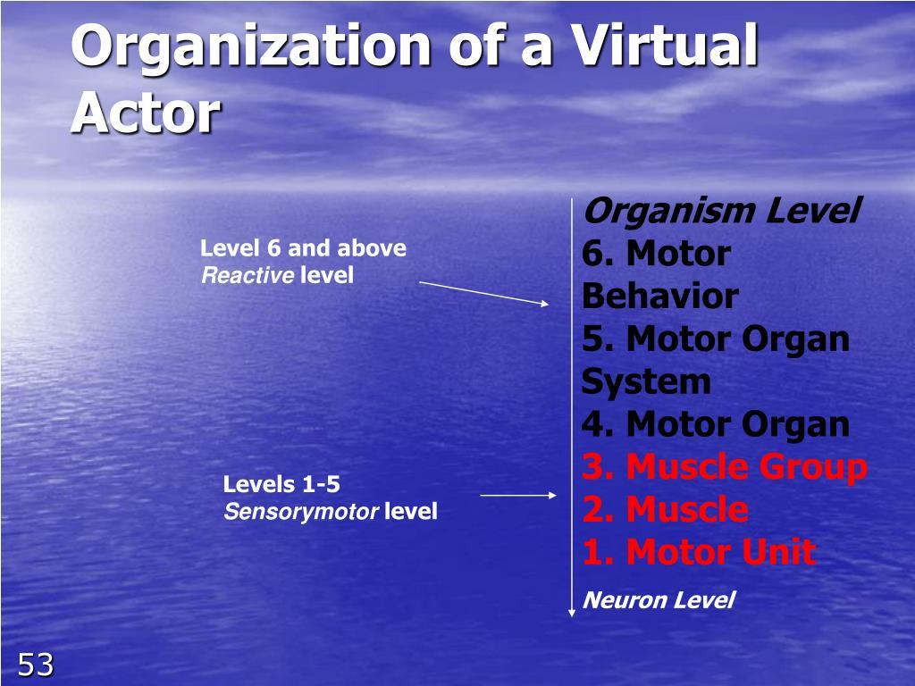 Organization of a Virtual Actor