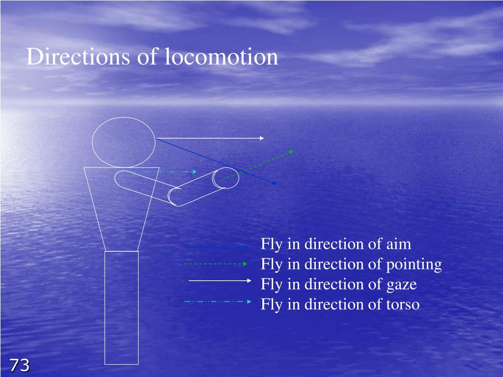 Directions of locomotion